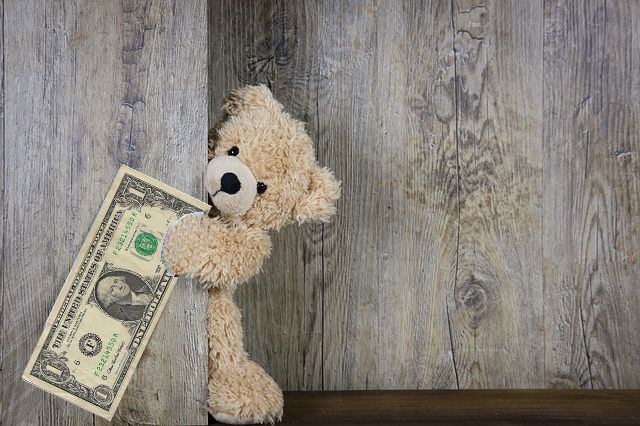 Stuffed Bear with Dollar